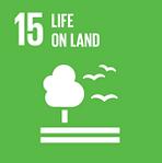 UN SDG 156.png