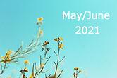 Spring%20Branches_edited.jpg