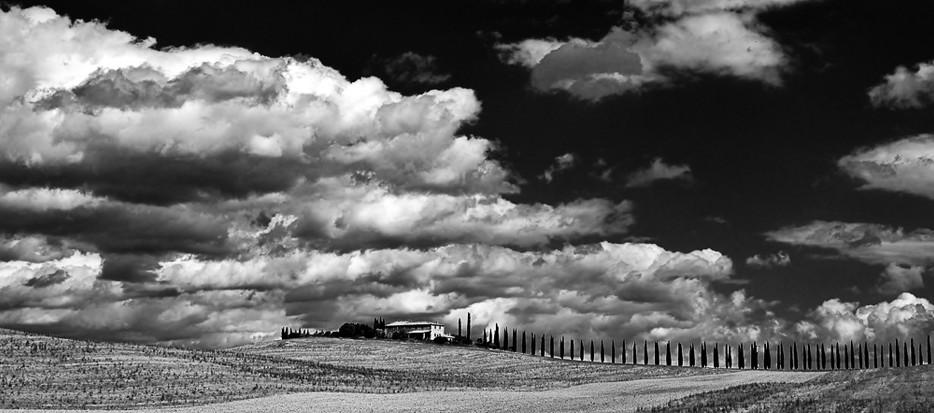 Simply-N landschap