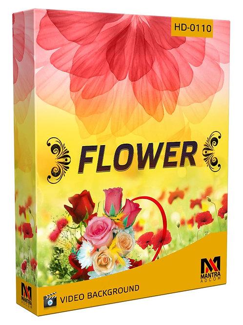 Flower Theme  | Multi Used Background