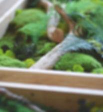 végétaux stabilisés, cadre stabilisé Détours Nature