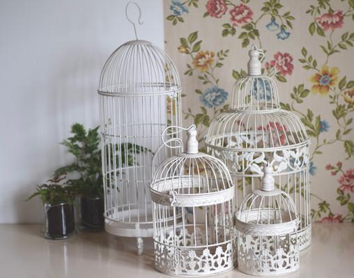 cage à oiseaux location Détours Nature