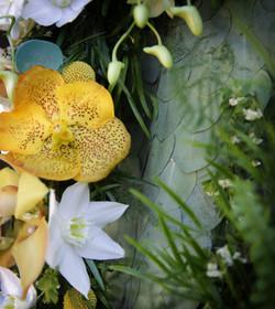 Détours Nature fleuriste