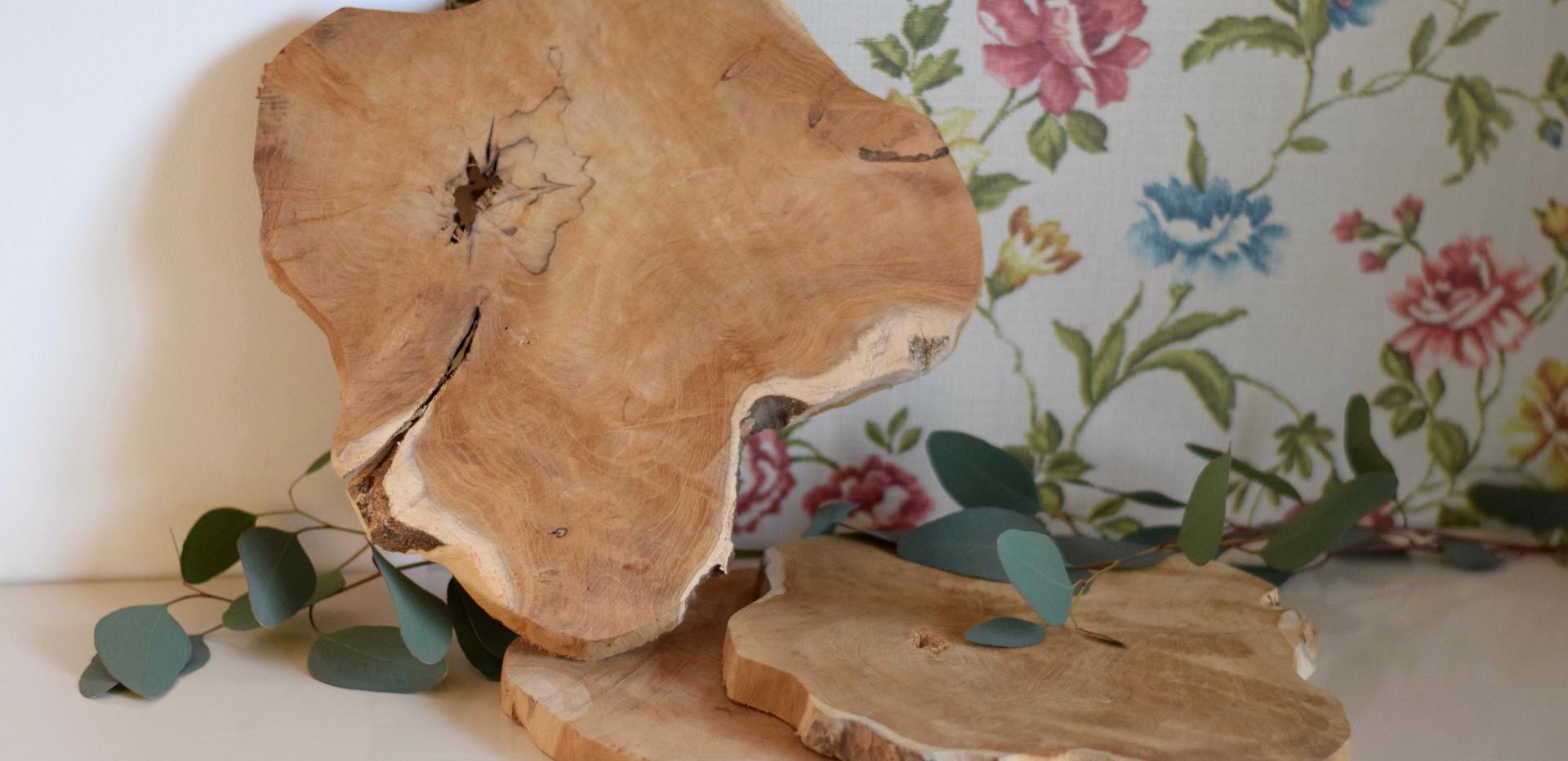 Tranche de bois location Détours Nature