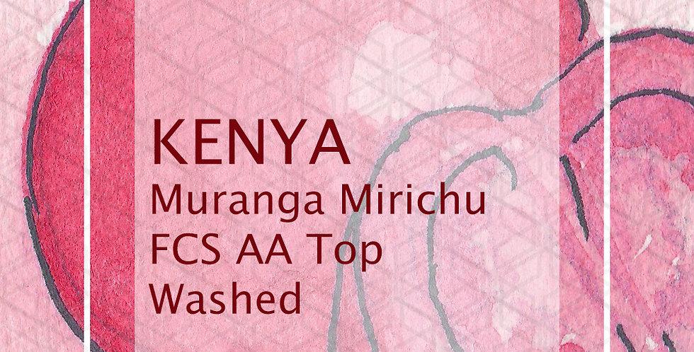Kenya Muranga Mirichu FCS AA Top  Washed