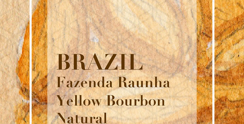 Brazil Fazenda Rainha Yellow Bourbon Natural
