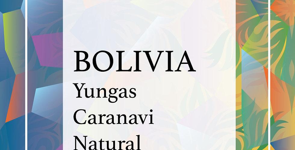 Bolivia Yungas Caranavi Natural