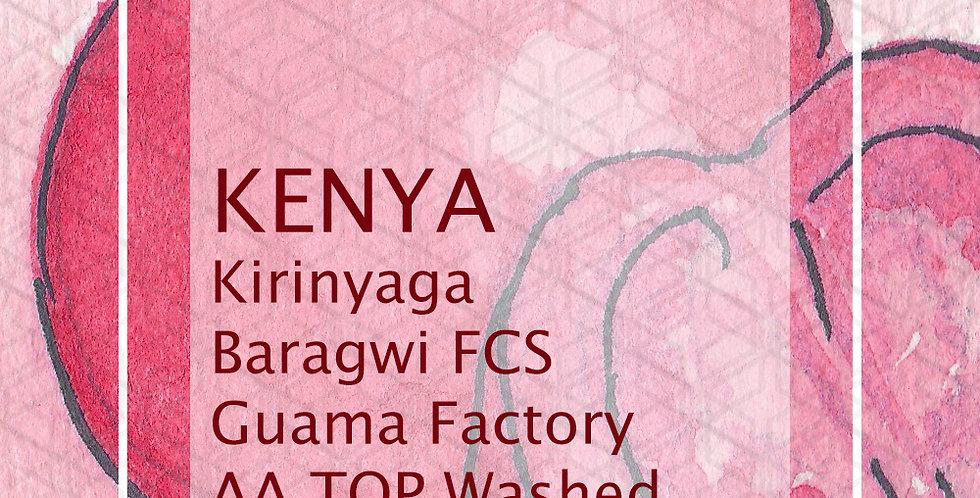 Kenya Kirinyaga Baragwi FCS Guama Factory AA TOP Washed