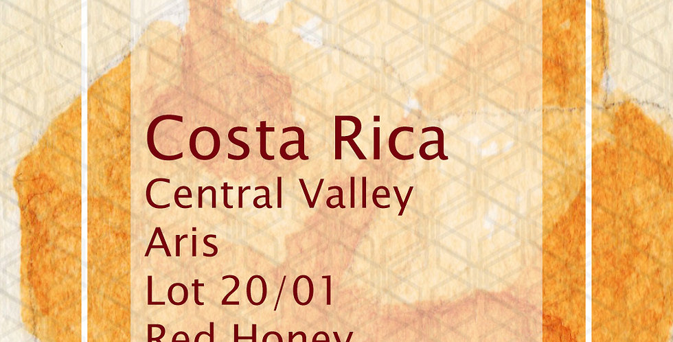 Costa Rica Central Valley Aris Lot 20/01 Red Honey