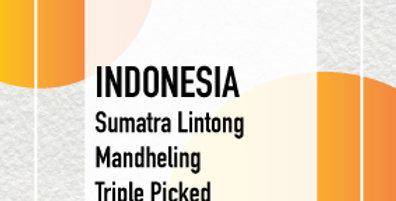Indonesia Sumatra Lintong Mandheling Triple Picked