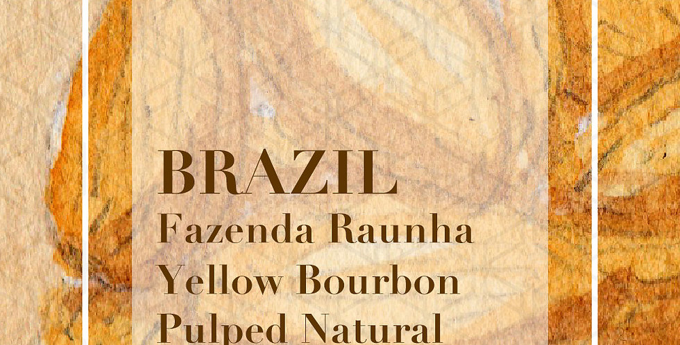 Brazil Fazenda Rainha Yellow Bourbon Pulped Natural
