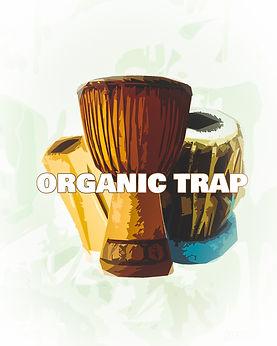 Organic Trap Drums.jpg