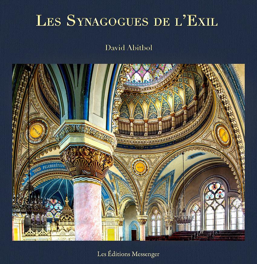 Couverture V4-Les Synagogues de l'Exil - le Livre copie.jpg