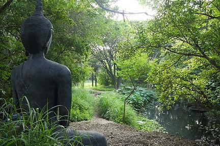 meditazione buddha.jpg