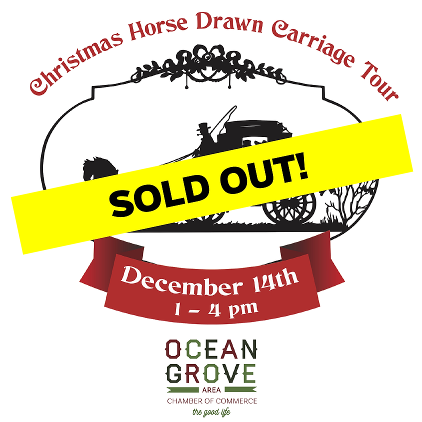 Holiday Horse-Drawn Carriage Tour