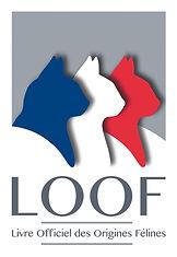 LOGO_LOOF.jpg