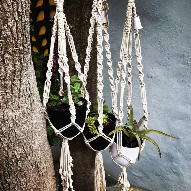 Rita's Macrame Plant Hangers