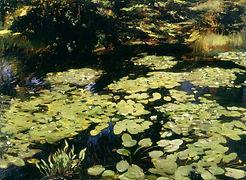 Water-lilies dated 1910 by William Bruce Ellis Ranken