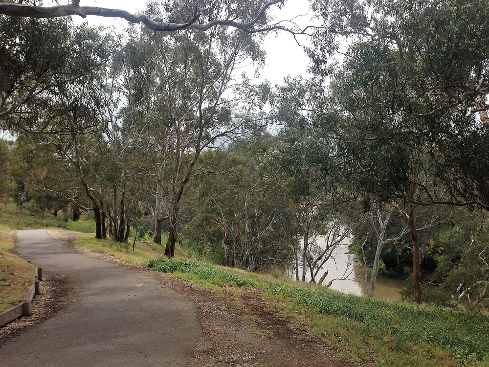 Take in the scenic views of the Main Yarra Trail on your Me-Mover