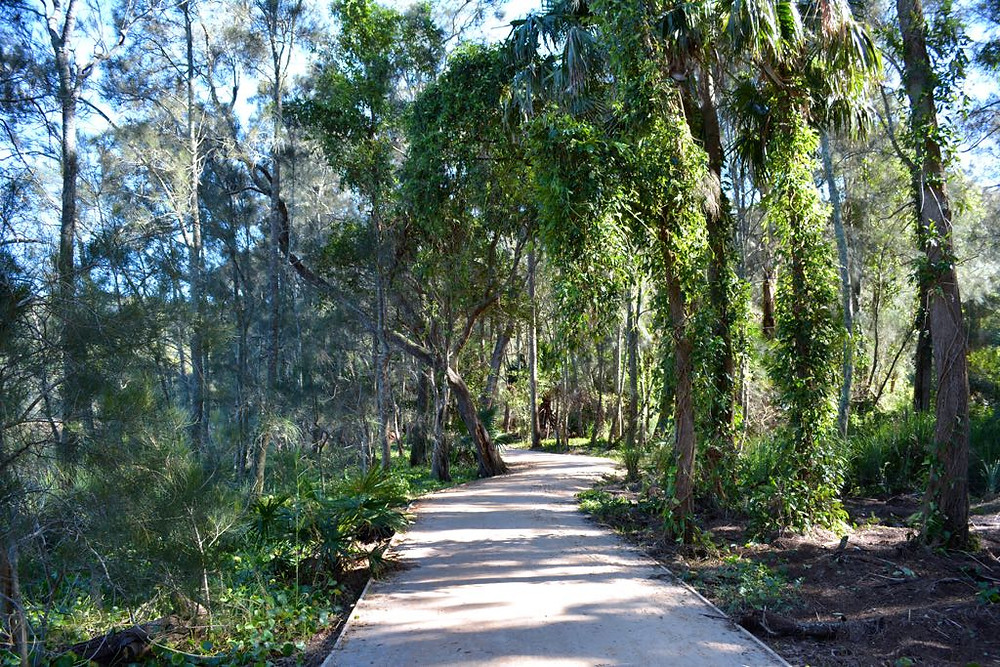 Narrabeen Lagoon Trail is flat and accessible for riding your Me-Mover Stepper Bike