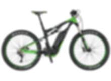 Strolz Rental - Scott E-Genius grün