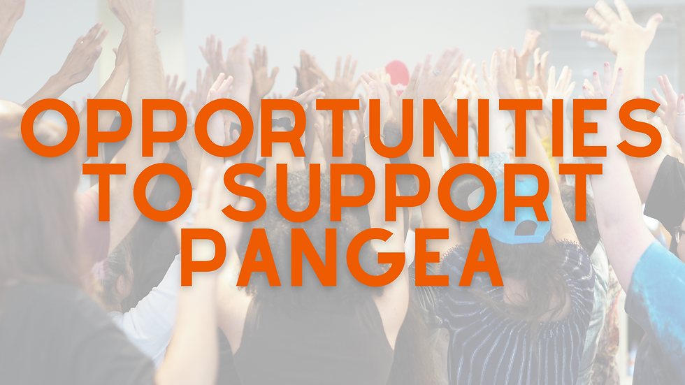 Oportunities to Support Pangea (1).png
