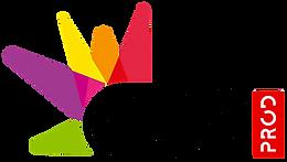 Logo-GDS-2017.png