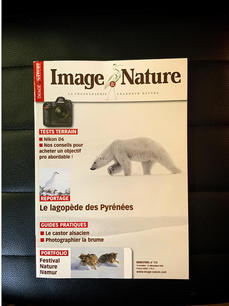 IMAGE & NATURE