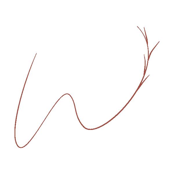 Wilder to Washington Logo