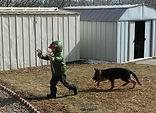A Boy & his Dog!!.jpg