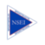 NSEI Logo - transparent bg 300x300 png.p