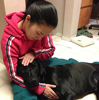 Mari Okazaki, Reiki for Animal, Chilliwack, Vancouver