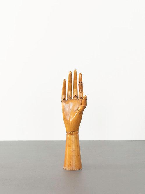 Hand Torso