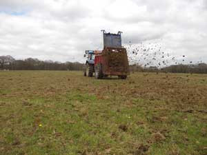 A bit later than usual due to the weather, we are finally able to spread our manure. No need for fer