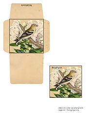 Goldfinch Card N Envelope.jpg