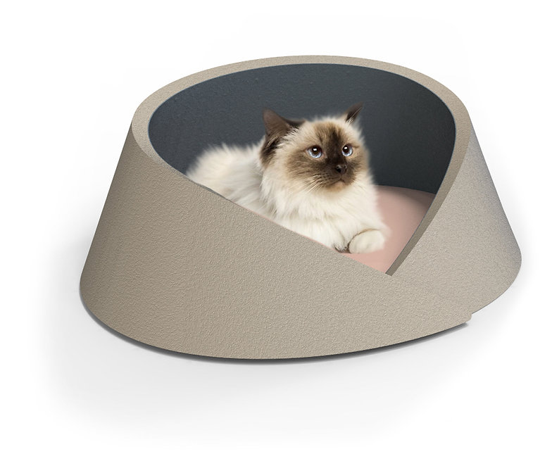 MIMI-CAT-BED-TOM-HIGGS-single.jpg
