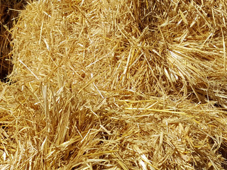 Wheat Straw Available at D&L Farm and Home - Denton