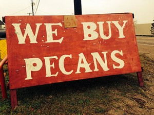 We Buy Pecans!!
