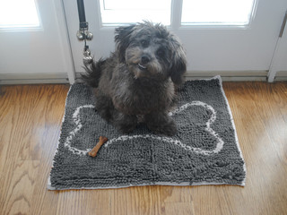 Soggy Doggy Doormats®, Slopmats & Shammys