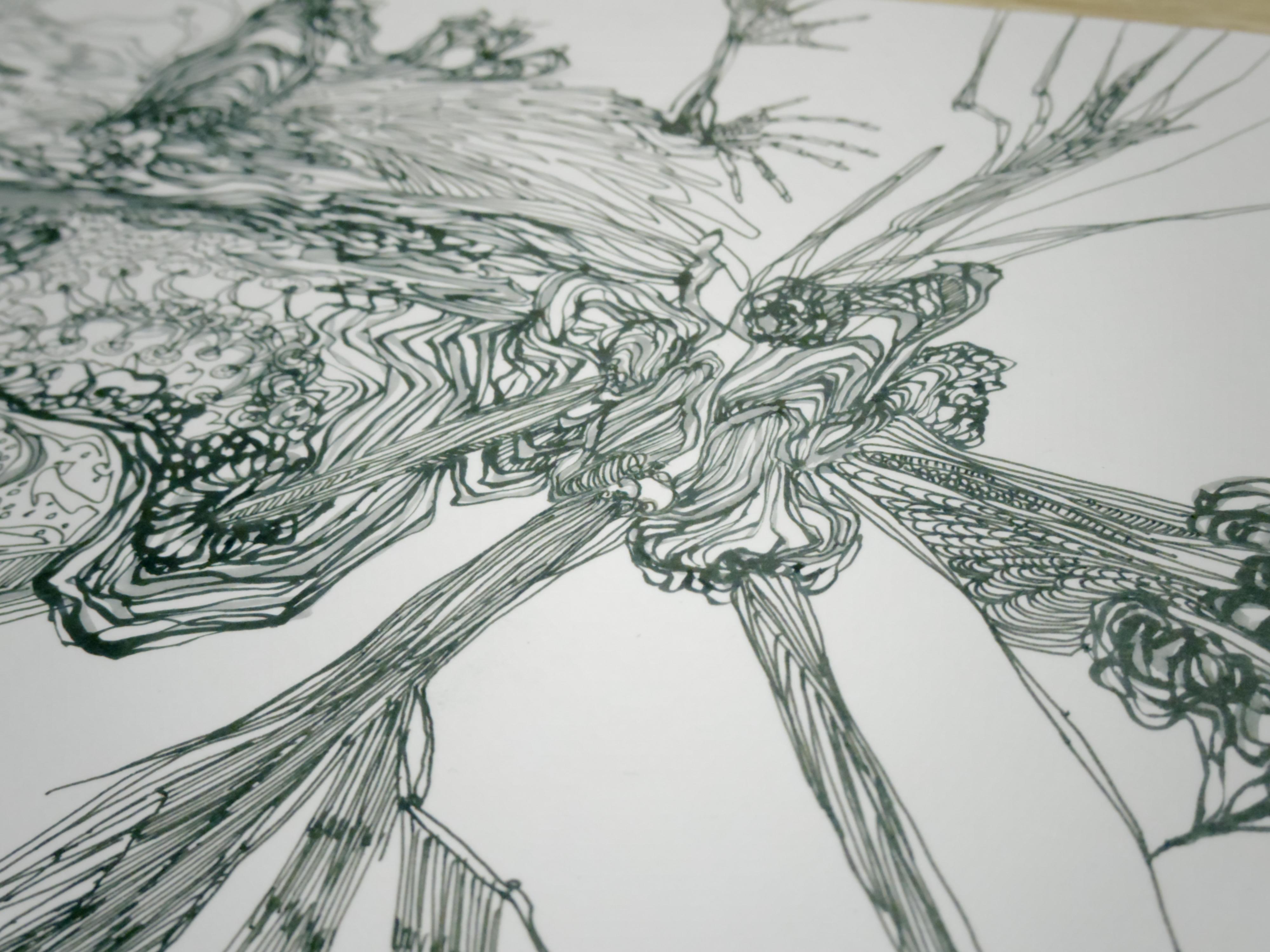 C drawing #F