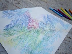TAKU drawing