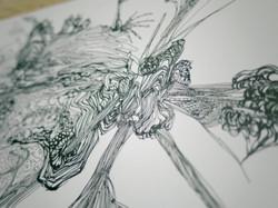 C drawing #F 01