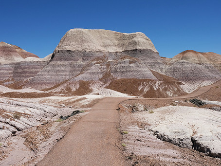 Clo's Next ViewPoint: Petrified Forest National Park, Arizona, USA