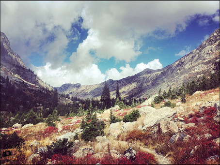 Clo's Next ViewPoint: 12 hours trek in Grand Teton, WY