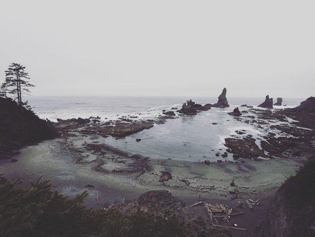 Clo's Next ViewPoint: Shi Shi Beach, from a tropical forest to a rocky beach
