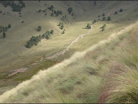 Clo's Next ViewPoint: The foggy Iztaccihuatl-Popocatepetl