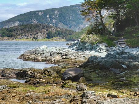 Clo's Next ViewPoint: Tierra Del Fuego National Park.