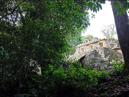 Clo's Next ViewPoint: The beautiful ruins of Yaxchilan, Mexico.
