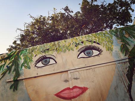 Clo's Next ViewPoint: Murals of Hermosillo