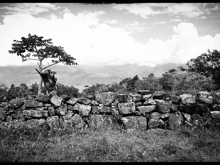 Clo's Next ViewPoint: Camino Real, Colombia